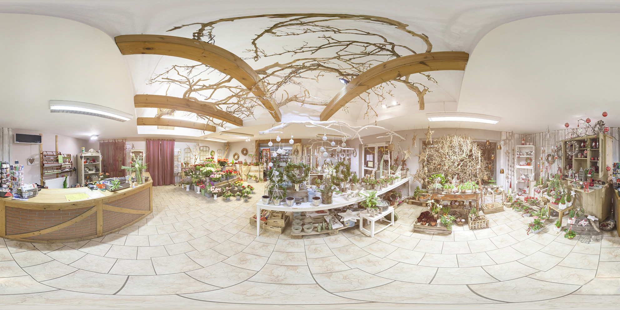 360, virtual reality, virtual tour, 360 degree, nursery, plant nursery, flower nursery, flower,